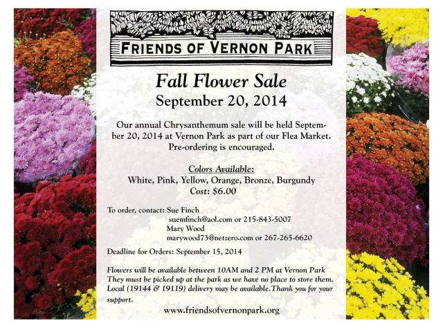 Fall Mums Sale